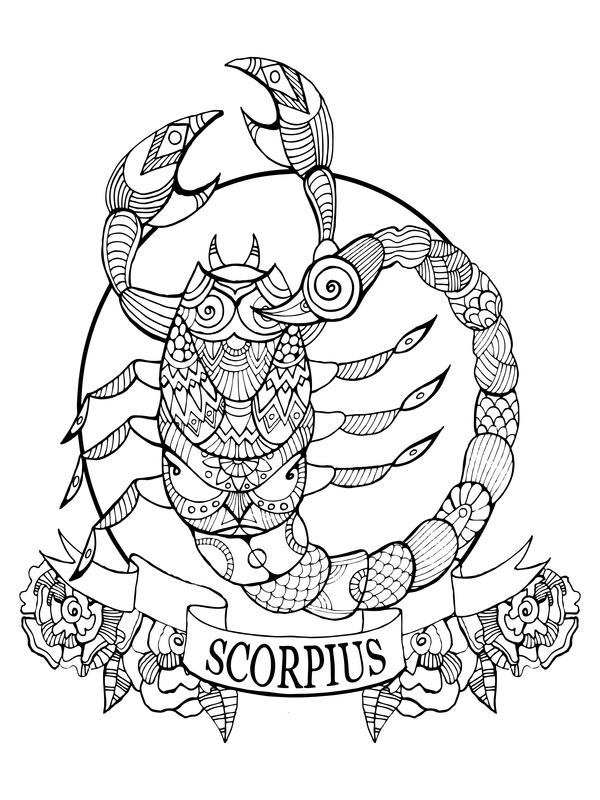 Skorpion mann braucht zeit